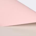 Light Pink+Rice Flour
